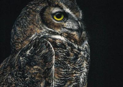 Debbie Lentz-Night Calls the Hunter